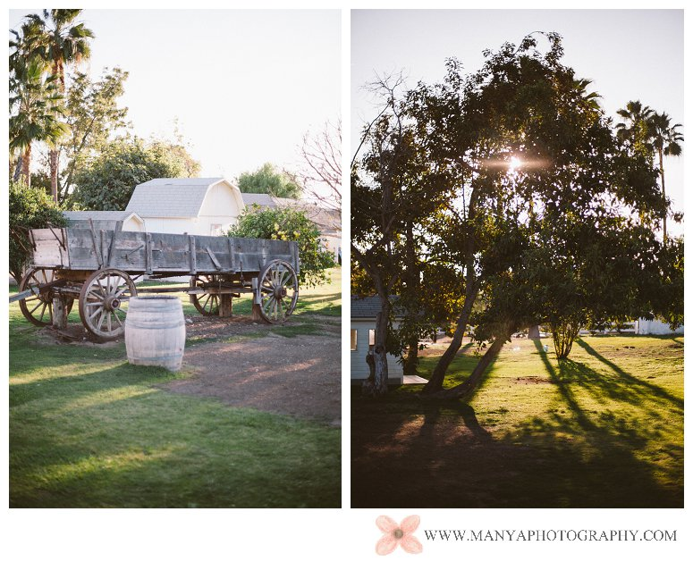 2013-12-01_0010- Orange County Wedding Photographer