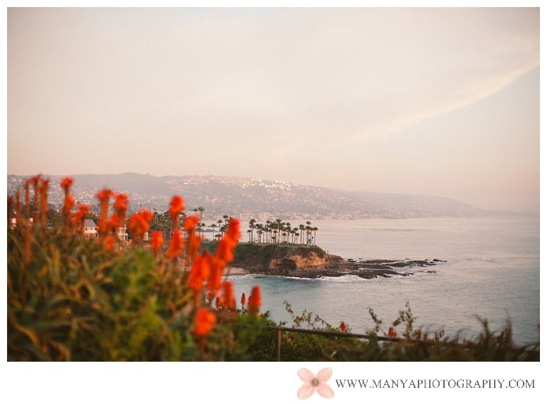2014-01-29_0097 - Laguna Beach Wedding Photographer