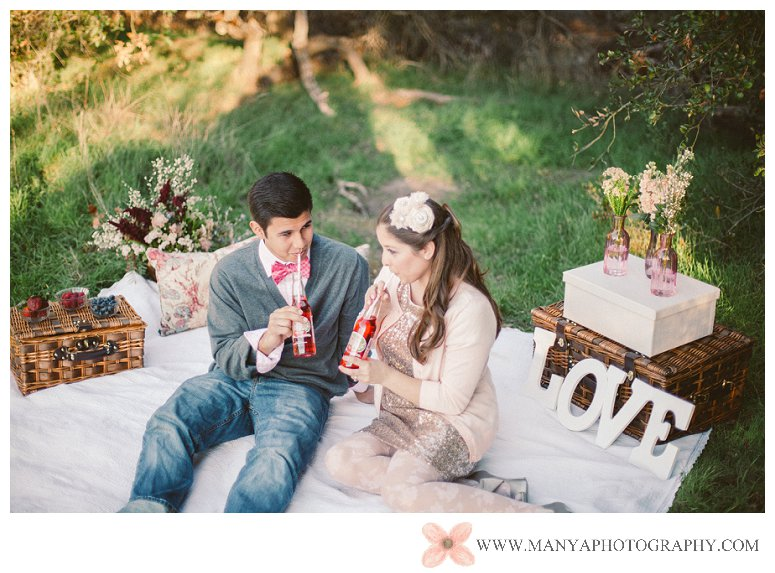 2014-02-01_0274- Valentine's Day Inspired Picnic Styled Engagement Shoot | Orange County Wedding Photographer