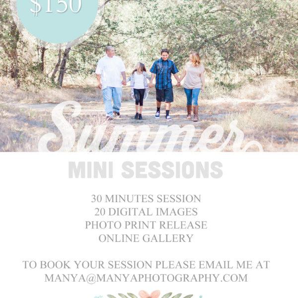 Summer Mini Sessions