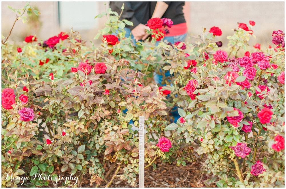 JandJ_Engagement_Orange_County_Wedding_Photographer_Manya_Photography_Cal_Poly_Pomona__0066